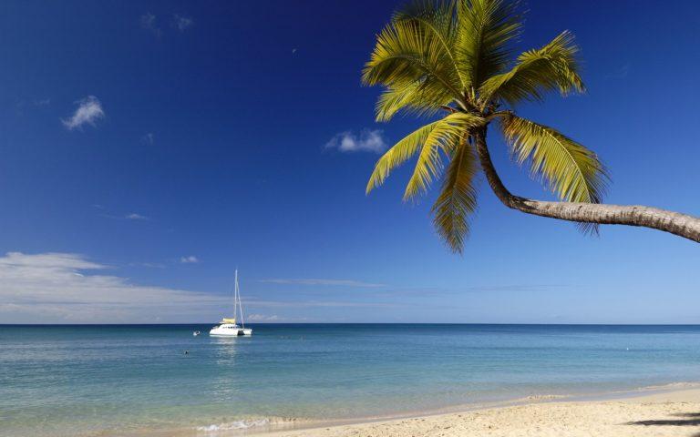 "Playa ""Anse des Salines"", Martinica"